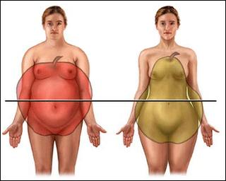 ganho de peso e menopausa